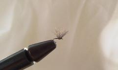 Fly Shop - noseeumfly